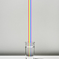 The Cup Filled With Water And A Rainbow by Yagi Studio