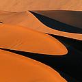 The Curve by Alistair Lyne
