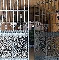 The Dakota Gates by Rob Hans