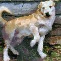 The Dog by Odon Czintos