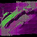 The Drift by Tim Allen
