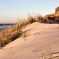 The Dunes Of Jones Beach by JC Findley
