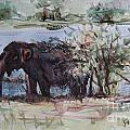 The Elelphant by Gayatri Vasudevan