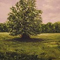 The Fairy Tree by Robert Gary Chestnutt