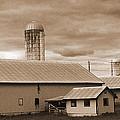 The Farm by Barry Jones