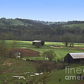 The Farm by Cheryl Butler
