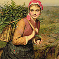 The Fern Gatherer by Charles Sillem Lidderdale