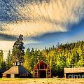 The Fintry Barns by Tara Turner