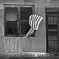 The Flag A Window And A Door by James Steele