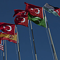 The Flags Of The Participating Nations by Stocktrek Images