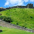 The Fortress At St. Kitts by Phyllis Kaltenbach