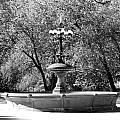 The Fountain In Black And White by Rob Hans