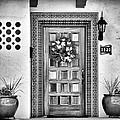 The Front Door by Diane Wood