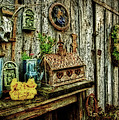 The Garden Shed by Kathy Jennings