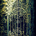 The Gate In The Grotto Of The Redemption Iowa by Susanne Van Hulst