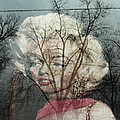 The Ghost Of Norma Jean by Todd Sherlock
