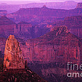 The Grand Canyon North Rim by Bob Christopher