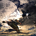 The Great Migration . Full Color by Wingsdomain Art and Photography