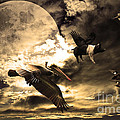 The Great Migration by Wingsdomain Art and Photography