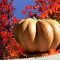 The Great Pumpkin And October Colors by Heinz G Mielke