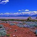 The Great Salt Lake From Antelope Island by Rich Walter