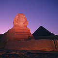 The Great Sphinx Is Illuminated by Richard Nowitz
