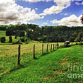 The Green Green Grass Of Home by Kaye Menner