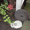 The Grinding Stone by Peggy Wilburn