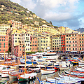 The Harbor At Camogli by Bill Roche