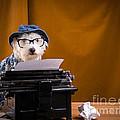 The Hard Boiled Journalist by Edward Fielding