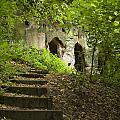 The Hermitage by Steev Stamford