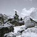 The Himalayas by Shaun Higson