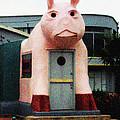 The Hog Stand by Lorraine Devon Wilke