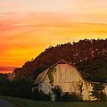 The Horse Barn by Randall Branham