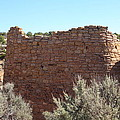 The Hovenweep Twin Towers by Cynthia Cox Cottam