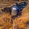 The Joy Of Mud by Steve Harrington