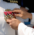 The Legion Of Merit Medal by Stocktrek Images