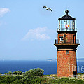 The Lighthouse On Martha's Vineyard by Mike Nellums