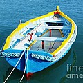 The Little Boat. by Alfie Borg