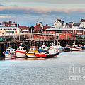 The Lobster Quay by David  Hollingworth