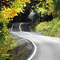 The Low Road by A L Sadie Reneau