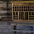 The Mail Room by Lorraine Devon Wilke