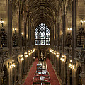 The Main Library Hall by Dave Wood