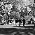The Mall At Central Park In Black And White by Rob Hans