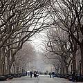 The Mall Central Park by Heidi Reyher