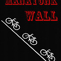 The Manayunk Wall by Bill Cannon