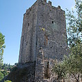 The Medieval Tower by Dany Lison