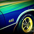 The Muscle Car Oldsmobile 442 by Susanne Van Hulst
