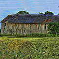 The Old Barn by Ericamaxine Price