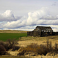 The Old Barn In The Meadow by Steve McKinzie